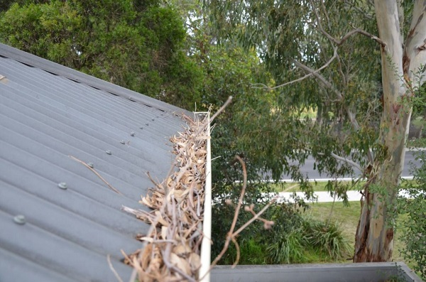 Before Gutter Protection