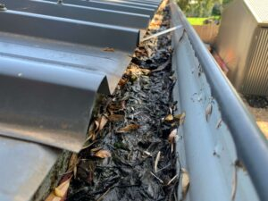 Clogged roof gutter line in Dandenong